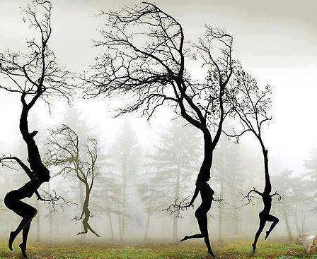 dans de aarde